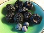 Fresh picked black raspberries and blue blueberries